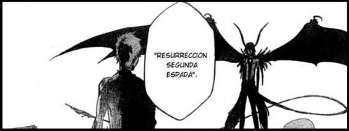 "Ichigo: ""I'm sorry, I don't speak Spanish. Nihon go ga Wakarimasu ka?"""