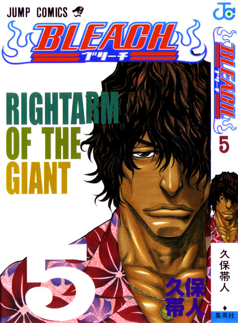 bleach-volume5-cover